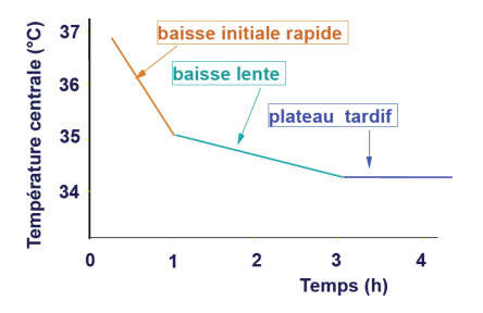 cours hypothermie